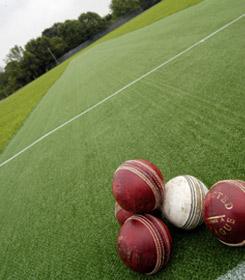 Cricket_1